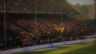 Fans in the sun